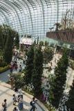 Jardins par le compartiment Singapour Photographie stock