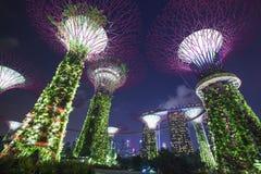 Jardins par le compartiment, Singapour Images libres de droits