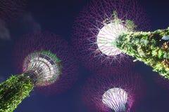 Jardins par le compartiment, Singapour Image stock