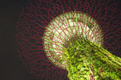 Jardins par le compartiment, Singapour Photos stock