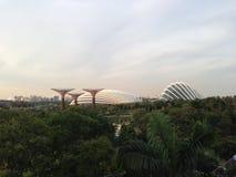 Jardins par le compartiment, Singapour Photos libres de droits
