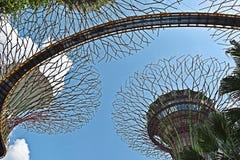 Jardins par le compartiment Singapour l'asie Photo libre de droits