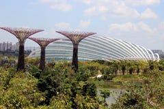 Jardins par le conservatoire de baie - Singapour Photographie stock libre de droits