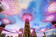 Jardins pela baía no crepúsculo, Singapura imagem de stock