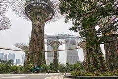 Jardins pela baía, Singapura - 28 de março de 2013: Jardins pela baía do baixo ângulo com Marina Bay Sands no fundo fotos de stock