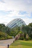 Jardins pela nuvem Forest Dome da baía Imagens de Stock