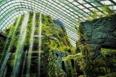 Jardins pelo louro Foto de Stock
