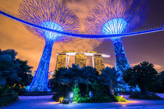 Jardins pelo louro Foto de Stock Royalty Free