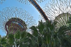 Jardins pelo louro, Singapore Ásia Fotos de Stock Royalty Free