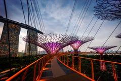 Jardins pelo louro Singapore fotos de stock royalty free