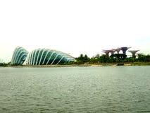 Jardins pelo louro, Singapore Imagens de Stock Royalty Free