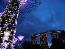 Jardins pelo louro, Singapore Imagem de Stock Royalty Free