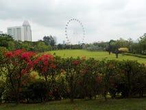 Jardins pelo louro, Singapore A roda gigantesca de Singapura no fundo imagens de stock