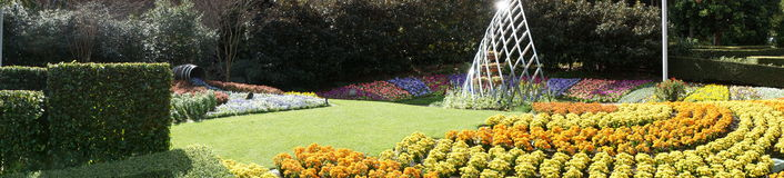 Jardins Roma Street Parklands Imagem de Stock Royalty Free
