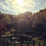 Jardins submergés au coucher du soleil Image libre de droits
