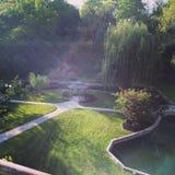 Jardins submergés au coucher du soleil Photo libre de droits
