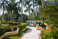 Jardins tropicaux aménagés en parc Images libres de droits