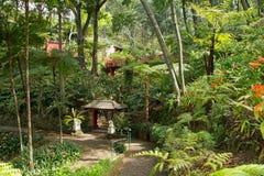Jardins tropicaux en Monte Palace Image stock