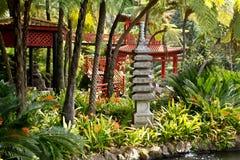 Jardins tropicaux en Monte Palace Photos stock