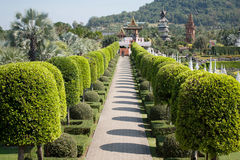 Jardín Foto de archivo libre de regalías