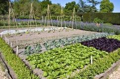 Jardín de cocina emparedado Imagenes de archivo