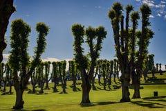 Jardín de Frederiksberg Imagen de archivo libre de regalías