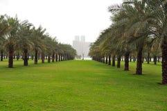 Jardín de la palma Fotografía de archivo