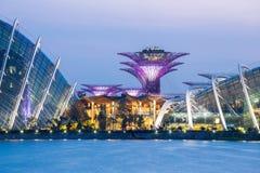 Jardín de Singapur por la bahía Imagen de archivo