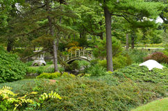 Jardín de té japonés de Fabyan Fotografía de archivo