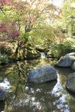 Jardín del japonés de Seattle Foto de archivo