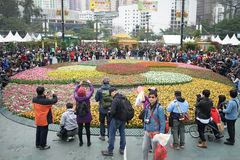 Jardín del Tulipa Imagenes de archivo