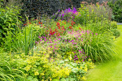 Jardín emparedado hermoso Foto de archivo libre de regalías