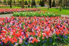 Jardín formal de la primavera Imagen de archivo libre de regalías