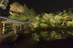 Jardín japonés en la noche Foto de archivo libre de regalías