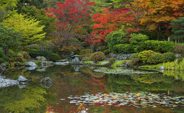 Jardín japonés, Seattle, WA los E.E.U.U. - octubre, 20 2015 Imagenes de archivo