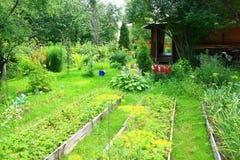 Jardín vegetal Imagenes de archivo