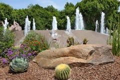 Jardín y fuente del cactus Fotos de archivo libres de regalías