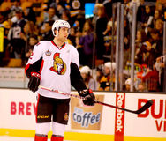 Jared Cowen Ottawa Senators Royalty Free Stock Photos
