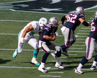Jared Odrick sacks Tom Brady. Miami Dolphins Defensive lineman Jared Odrick (98) sacks New England Patriots quarterback Tom Brady (12) early in the first quarter Stock Images
