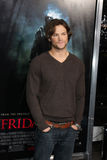 Jared Padalecki Fotografia de Stock Royalty Free