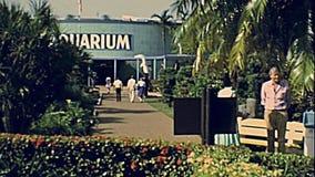 jaren '70 Miami Seaquarium stock videobeelden