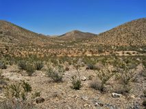 Jarilla Mountains near Orogrande, New Mexico. The Jarilla Mountains near Orogrande, New Mexico was once a thriving mining area. Today the Bureau of Land stock photos