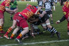 The Jarnac and Cherves-Richemont rugby teams play each-other royalty free stock images