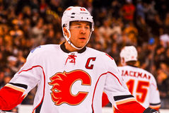 Jarome Iginla Calgary Flames Royalty Free Stock Image