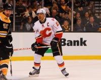 Jarome Iginla Calgary Flames Fotografering för Bildbyråer