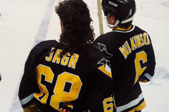 Jaromir Jagr, pittsburgh penguins Obraz Royalty Free