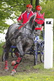 Jaroslav Jirgala in Central Europe Driving Cup. The driver Jaroslav Jirgala with the horse called Kolet in Cross-country marathon discipline within Central Royalty Free Stock Photo