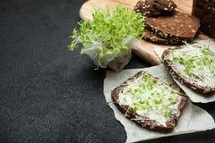 Jarosz kanapki od mikro zieleni warzyw kosmos kopii obraz stock