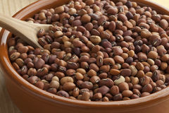 Jarpesie beans in a bowl Royalty Free Stock Photos