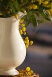 Jarra con las flores amarillas del mimoza Foto de archivo libre de regalías